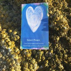 Heart Whisper oracle for today is Inner Peace #heartwhisper #selfcarefirst
