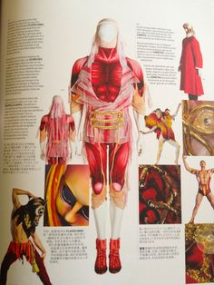 "Costume of the Flayed Ones  Cirque du Soleil ""O"""