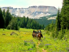 Image detail for -CODY, Wyoming—Guest ranches are ever popular as family vacation ...