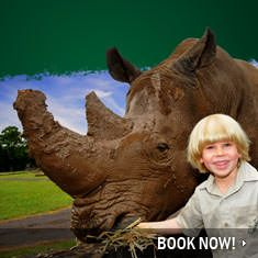 """Australia Zoo - Home of the Crocodile Hunter - """"Conservation through Exciting Education"""""""