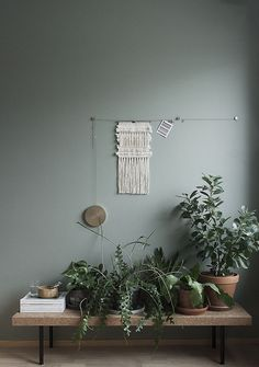 plants on bench against green wall Green Indoor plants Tropical Boho Bohemian Relax Nature Hippy Bold Paint Styling Interior Design Home Botanical house home style love nature natural tropics tropical plant lounge living Color Inspiration, Interior Inspiration, Tuesday Inspiration, Feng Shui, Interior And Exterior, Interior Design, Interior Wall Colors, Wall Colors For Bedroom, Interior Styling