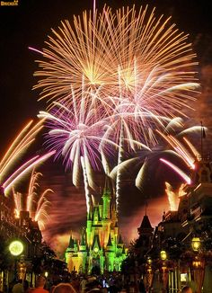 Plan your 2013 Mickey's Not So Scary Halloween Party visit with these GREAT TIPS!