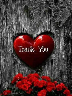 🎈🎈🎈Thank you so much🎈🎈🎈 for all the wonderful birthday wishes. Thanks to you it was a very special day! Thank You Pictures, Thank You Images, Love You Images, Thank You Quotes For Birthday, Birthday Quotes, Birthday Wishes, Happy Birthday, Thank You Messages Gratitude, Thank You Wishes