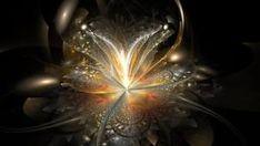 Jaba, Wake Up, Cosmos, Personal Development, Brain, Spirit, Places, The Brain, Career