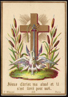 Jesus Christ is my love and He is book for me. Wentzel