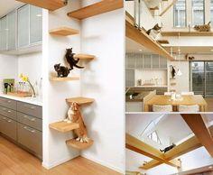 Tierfreundliche Katzenmöbel und Kratzbäume