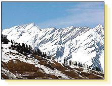 Shimla - Snow