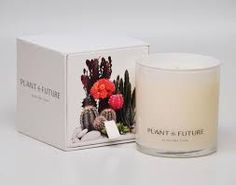 Image result for plant the future candle