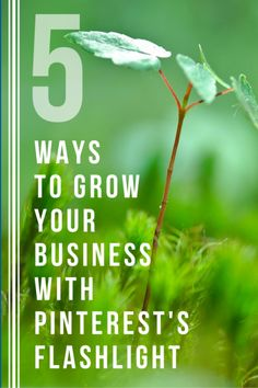 Discover 5 ways to use the new visual discovery tool within Pinterest to grow your business.