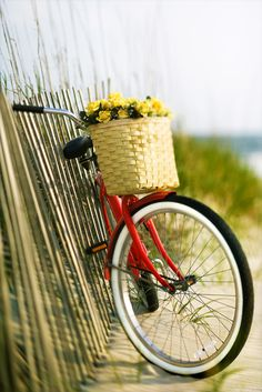 Red Bicycle with yellow flowers