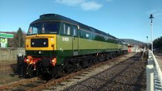 Electric Locomotive, Diesel Locomotive, Train Service, Kestrel, Trains, Lion, British, Leo, Lions