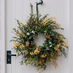 A spring wreath on a frosty Cheshire morning. The daffodils are drooping in the cold but their heads will stand again in the sunshine. This mornings gift. Whats the weather like with you? Garden Styles, Daffodils, Floral Wreath, Artisan, Cold, Wreaths, Mornings, Spring, Sunshine