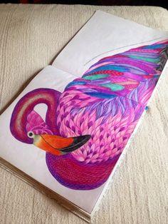 Flamingo Animal Kingdom Millie Marotta