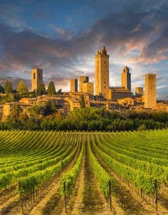Italy Travel Inspiration - San Gimignano, Tuscany. Rich families competed for having the highest towers to live in. Only a tiny fraction remain.