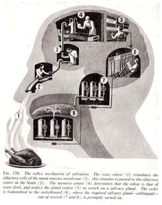 """Fritz Kahn (1888-1968), the pioneer of infographics. Some of his images foretell the future: for example the """"physician of the future"""" """"remotely monitoring his patient's health from his desktop with the aid of various applets"""""""