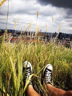 Instagram fan @viktor096 enjoying the calm before a storm. #converse #chucktaylor