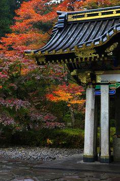 """""""landscapelifescape:  Nikko, Japan   """""""