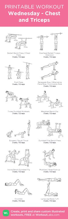Wednesday - Chest and Triceps: my visual workout created at WorkoutLabs.com • Click through to customize and download as a FREE PDF! #customworkout