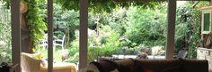 Questo é il mio giardino....