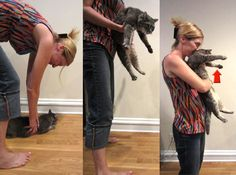 The Heimlich Maneuver for Cats .... We all know my cat is bound to choke on food.