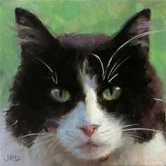 "Daily Paintworks - ""Fluffy Tuxedo Kitty"" - Original Fine Art for Sale - © J. Dunster"