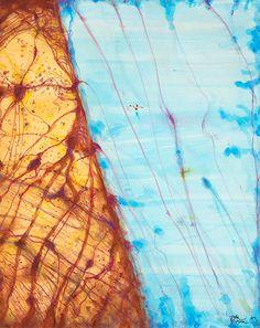 © John Olsen ~ Lake Eyre with Dragon veins ~ 2013 mixed media on French cotton paper at Tim Olsen Gallery Sydney Australia