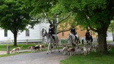 Genesee Valley Hunt Club riding through the Village Ruby Foote Photography