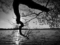 #mobilnytydzien169 #tree_magic #magic_shots_ #beautiful_nature #tv_mist #landscape_captures #loves_trees_rural #mobile_perfection #bnw_greatshots #bnw_life #bnw_planet #bnwpoland #ig_energy_bw  #iphonex #iphoneography #photooftheday #bw_perfect #bnw_perfection #bnw_photography