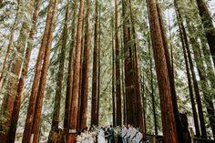 camp campbell YMCA wedding Bug Sur California