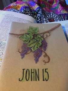Thirty Days in John 15, Day 1 Preview: Context   The Doorposts Blog