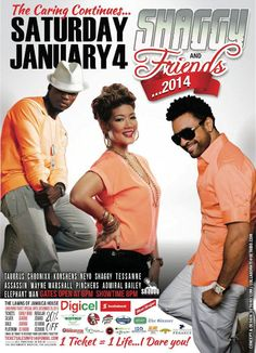 Shaggy & Friends 2014...another great concert held in Jamaica. Come to Jamrock for the best in live music!