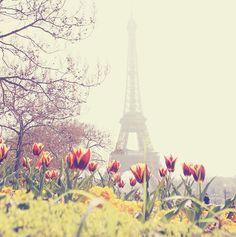 Paris : Paris