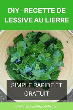 DIY – Lessive au lierre You are in the right place about Beauty Hacks products Here we offer you the most beautiful pictures about the Beauty Hacks fo Diy Beauty, Beauty Hacks, How To Heal Burns, Relieve Bloating, Girl Life Hacks, Girl Tips, Homemade Beauty Products, Green Life, Diy Skin Care