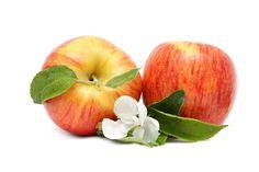 Rashaan Gordon - desktop wallpaper for apple - 7226x4818 px