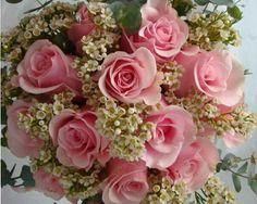 Dee Esperanza for u mars,miss na kita:-)