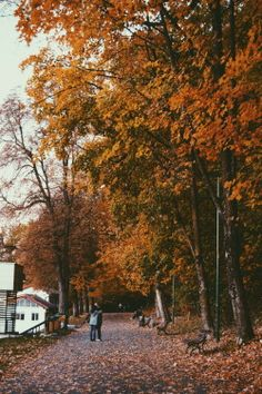 "thehostage: "" warm hugs and autumn by Diugan Alexandru "" Autumn Scenes, Season Of The Witch, Autumn Cozy, Autumn Aesthetic, Warm Hug, Autumn Photography, Best Seasons, Hello Autumn, Autumn Inspiration"