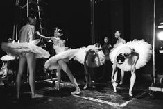 The Bolshoi Ballet in London - in pictures Contemporary Dance, Modern Dance, Ballet Art, Ballet Dancers, Vintage Ballet, Vintage Circus, Ballet Dance Photography, Paris Opera Ballet, Ballerina Project