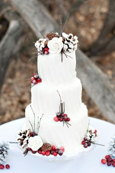 Idea for Christmas cake.cranberry or red plum filling for the spiced cake? Cream cheese or white chocolate frosting? PartySavvy loves the use of bright reds in the cranberries to spice up the look of this white cake. Christmas Wedding Cakes, Winter Wedding Cakes, Cupcake Wedding, Holiday Wedding Ideas, Fruit Wedding, Winter Wonderland Wedding, Winter Wedding Inspiration, Autumn Inspiration, Style Inspiration