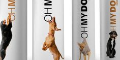 Awesome pet product packaging. And name.