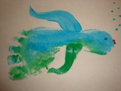 Footprint Fish