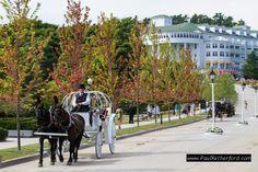 Grand Hotel fall color view cinderella wedding horse drawn carriage mackinac island northern michigan