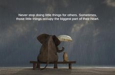Never stop doing little things for others. Sometimes, those little things occupy the biggest part of their heart.  thedailyquotes.com