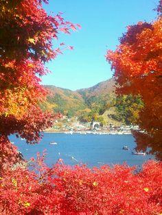 Autumn View @Kawaguchi Lake