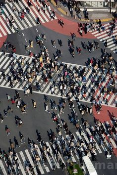 Shibuya crossing, one of the world's busiest intersections
