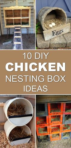 DIY Chicken Nesting Box Ideas Give your chickens a safe, comfortable place to lay eggs with homemade nesting boxes.Give your chickens a safe, comfortable place to lay eggs with homemade nesting boxes. Chicken Barn, Chicken Coup, Chicken Houses, Chicken Coop Decor, Chicken Coop Designs, Keeping Chickens, Raising Chickens, Backyard Chicken Coops, Chickens Backyard