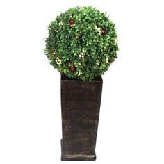 Home Accents Holiday 3.16 ft. Pre-Lit LED Boxwood Artificial Christmas Tree Topiary with 35 Battery-Operated Warm-White CHZH3811647THC at The Home Depot - Mobile