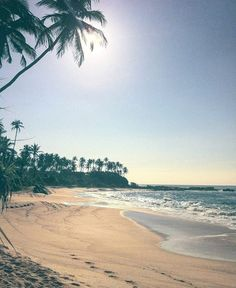 Perfect Sunny  Sunday to spend a weekend #SriLanka  Photo @ellenscholten_  #Sunny #Sunday #TravelSriLanka #VisitSriLanka #Holiday #weekend #beach #srilankabeach #instatravel #travel #instanature #nature