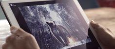 InfoNavWeb                       Informação, Notícias,Videos, Diversão, Games e Tecnologia.  : Google lança recurso para deixar arquivos JPEG 35%...