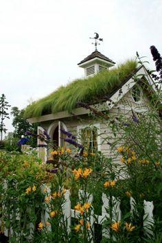 patio roof greening garden house exterior ideas