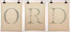 Human Body Fonts: Red Ked's Interactive 'BodyType' Script Celebrates Intimacy